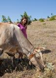 συμπάθεια αγελάδων Στοκ Εικόνες