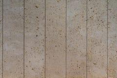 Συμπαγής τοίχος με το υπόβαθρο κοχυλιών θάλασσας Στοκ Εικόνα