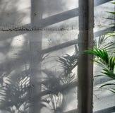 Συμπαγής τοίχος με το φως ήλιων Στοκ φωτογραφίες με δικαίωμα ελεύθερης χρήσης