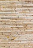 συμπαγής τοίχος Στοκ Εικόνα
