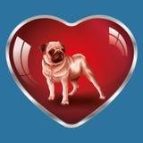 Συμπαθώ τα σκυλιά, είναι στην καρδιά μου! Στοκ εικόνες με δικαίωμα ελεύθερης χρήσης