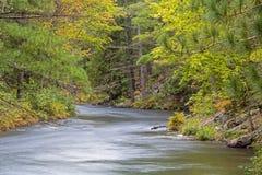 Συμπιέσεις ποταμών Mississauga μεταξύ των πεύκων στοκ εικόνες με δικαίωμα ελεύθερης χρήσης