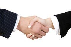 συμφωνία Στοκ Εικόνες