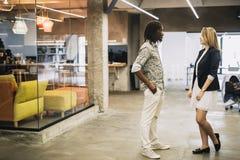 Συνάδελφοι σε ένα σύγχρονο γραφείο Στοκ φωτογραφία με δικαίωμα ελεύθερης χρήσης