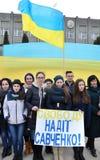 Συνάθροιση υπέρ της ελπίδας Savchenko_2 Στοκ εικόνα με δικαίωμα ελεύθερης χρήσης