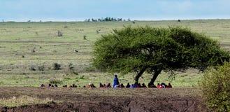 Συνάντηση ατόμων Masai Στοκ Φωτογραφία