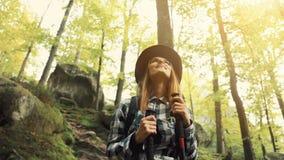 Συναρπασμένο κορίτσι μεταξύ των δέντρων φιλμ μικρού μήκους