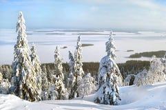 Συναρπαστική εικόνα χειμερινού τοπίου τοπίων στο εθνικό kansallispui Kolin πάρκων Koli Στοκ Φωτογραφίες