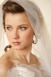 Συναρπαστική νύφη Στοκ Φωτογραφία