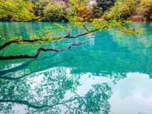 Συναρπαστική σκηνή της λίμνης Plitvice, εθνικό πάρκο της Κροατίας Απαριθμημένος στη παγκόσμια κληρονομιά της ΟΥΝΕΣΚΟ Στοκ εικόνες με δικαίωμα ελεύθερης χρήσης