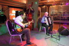 Συναυλία τζαζ Στοκ εικόνες με δικαίωμα ελεύθερης χρήσης