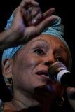 Συναυλία του Buena Vista Social Club στην Ουγγαρία Στοκ φωτογραφίες με δικαίωμα ελεύθερης χρήσης