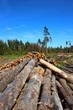 Συνδέεται την αναγραφή Στοκ φωτογραφία με δικαίωμα ελεύθερης χρήσης