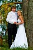 συνδέστε το γάμο στοκ εικόνα με δικαίωμα ελεύθερης χρήσης