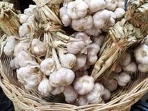 Συνδεδεμένες δέσμες του σκόρδου σε ένα καλάθι στην ανατολική αγορά στοκ φωτογραφίες
