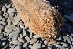 Συνδεθείτε την παραλία Στοκ Εικόνες