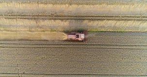 Συνδυάστε τη θεριστική μηχανή συγκομίζοντας το γεωργικό τομέα σίτου φιλμ μικρού μήκους