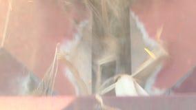Συνδυάστε τις συγκομιδές ένας ώριμος τομέας καλαμποκιού, η άποψη από την καμπίνα απόθεμα βίντεο