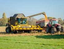 Συνδυάστε τους σπόρους καλαμποκιού εκφόρτωσης θεριστικών μηχανών στοκ εικόνες