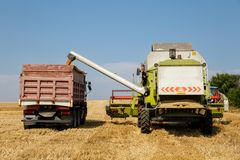 Συνδυάστε το σιτάρι σίτου εκφόρτωσης θεριστικών μηχανών στο ρυμουλκό φορτηγών μια φωτεινή θερινή ημέρα στοκ φωτογραφίες με δικαίωμα ελεύθερης χρήσης
