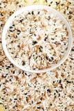 συνδυασμένο ρύζι στοκ εικόνες