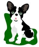 Συνεδρίαση κουταβιών κινούμενων σχεδίων Ιστού, πορτρέτο χαριτωμένο λίγου σκυλιού που φορά το περιλαίμιο Φίλος σκυλιών r Απομονωμέ διανυσματική απεικόνιση