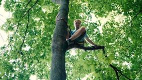 Συνεδρίαση νεαρών άνδρων σε ένα δέντρο με ένα μακρύ σχοινί και τις ζώνες το καλοκαίρι στην slo-Mo απόθεμα βίντεο