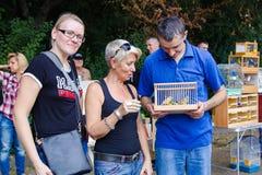 Συνεδρίαση των εραστών των μοναδικών πουλιών Στοκ Εικόνες