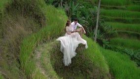 Συνεδρίαση Newlyweds και τοποθέτηση στο πεζούλι ρυζιού στο Μπαλί Χέρια εκμετάλλευσης, αγκάλιασμα ρομαντικός γάμος απόθεμα βίντεο