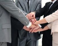 Συνεργασία έννοιας επιτυχίας: ένα φιλικό επιχειρησιακό τεθειμένο ομάδα thei Στοκ Εικόνες