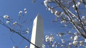 συνεχές μνημείο Ουάσιγκτον απόθεμα βίντεο