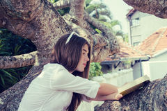 Συνεδρίαση έφηβη σε ένα μεγάλο δέντρο στοκ εικόνα