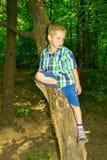 Συνεδρίαση αγοριών από ένα δέντρο στοκ φωτογραφία με δικαίωμα ελεύθερης χρήσης