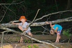 Συνεδρίαση αγοριών από ένα δέντρο Στοκ φωτογραφίες με δικαίωμα ελεύθερης χρήσης