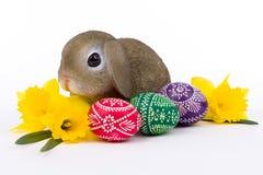Συνεδρίαση λαγουδάκι Πάσχας σε μια δέσμη των αυγών Πάσχας Στοκ Εικόνα
