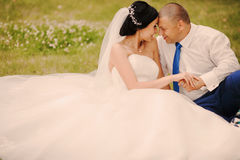 Συνεδρίαση γαμήλιων ζευγών στη χλόη Στοκ Εικόνες