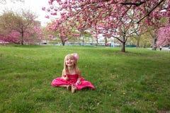 Συνεδρίαση νέων κοριτσιών από το δέντρο ανθών κερασιών Στοκ εικόνες με δικαίωμα ελεύθερης χρήσης