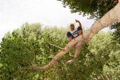 Συνεδρίαση νεαρών άνδρων σε ένα δέντρο Στοκ φωτογραφίες με δικαίωμα ελεύθερης χρήσης