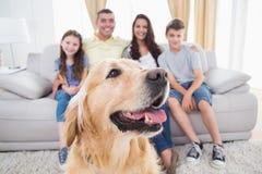 Συνεδρίαση σκυλιών με την οικογένεια στο σπίτι στοκ φωτογραφίες με δικαίωμα ελεύθερης χρήσης