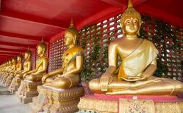 Συνεδρίαση του Βούδα περισυλλογής Στοκ Φωτογραφίες