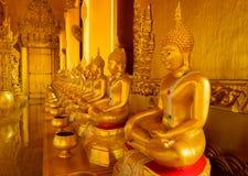 Συνεδρίαση του Βούδα που ευθυγραμμίζεται Στοκ φωτογραφία με δικαίωμα ελεύθερης χρήσης