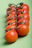 συνημμένες άμπελοι ντοματών κερασιών πράσινες Στοκ φωτογραφία με δικαίωμα ελεύθερης χρήσης