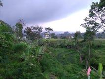 συννεφιασμένος ουρανού στο βουνό lawu στοκ φωτογραφίες