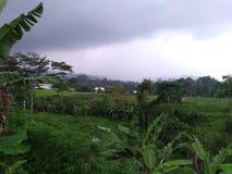 συννεφιασμένος ουρανού στο βουνό lawu στοκ εικόνες με δικαίωμα ελεύθερης χρήσης