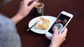 συνοδευόμενος συλλάβετε την ιταλική θέση φωτογραφίας τροφίμων αρχείων κουζίνας κοτόπουλου που επεξεργάζεται το επαγγελματικό ακατ απόθεμα βίντεο