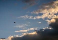 Συνοδεύω τα αεροπλάνα στο μπλε ύψος στοκ φωτογραφία