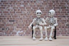 Συνομιλία σκελετών Στοκ φωτογραφία με δικαίωμα ελεύθερης χρήσης