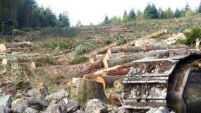 Συνολική καταστροφή του περιβάλλοντος με την έννοια μηχανημάτων Στοκ εικόνες με δικαίωμα ελεύθερης χρήσης