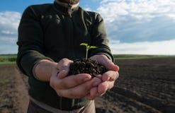 συντήρησης περιβαλλοντικές αγροτών φρέσκες χεριών εκμετάλλευσης νεολαίες συμβόλων φυτών ζωής νέες ζωή νέα Στοκ Φωτογραφία