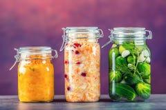 συντήρηση Βάζα τουρσιών Τα βάζα με τα τουρσιά, εμβύθιση κολοκύθας, άσπρο λάχανο, έψησαν το κόκκινο κίτρινο πιπέρι παστωμένα λαχαν Στοκ Εικόνες